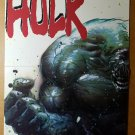 Incredible Hulk Avengers Marvel Comics Poster by Mike Deodato