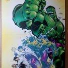 Incredible Hulk Avengers Bruce Banner Marvel Comic Poster by Ed McGuinness