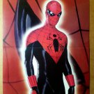 Spider-Man Marvel Comic Poster by Alex Ross