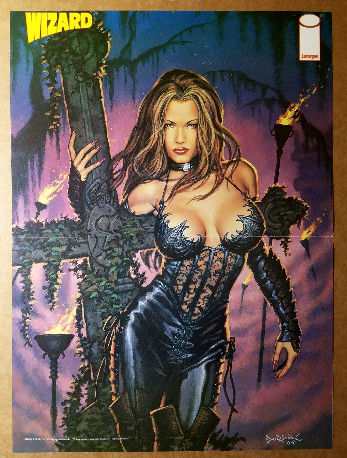 Alley Cat Image Comics Poster by Bagget Dorian