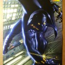 Black Panther Marvel Comics Poster by Mark Texeira