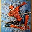 Spider-Man Marvel Comic Poster by Steve Skroce