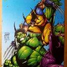 Wolverine Vs Hulk Marvel Comics Poster by Leinil Francis Yu