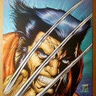 Wolverine Marvel Comics Poster by Leinil Francis Yu