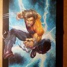 Wolverine James Howlett Marvel Comics Poster by Salvador Larroca