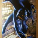 Black Panther Avengers Wakanda Marvel Comics Poster by Mark Texeira