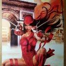 Elektra The Book of Samurai Daredevil Marvel Comic Poster by Greg Horn