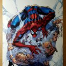 Amazing Spider-Man 30 Marvel Comics Poster by J Scott Campbell