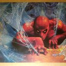 Amazing Spider-Man Web Tunnel Marvel Comics Poster by Vince Evans