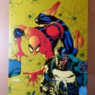 The Punisher War Journal 15 Spider-Man Marvel Comics Poster by Jim Lee