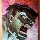 Hulk Visionaries Marvel Comics Poster by Jeff Purves