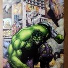 Incredible Hulk 110 Marvel Comics Poster by Gary Frank