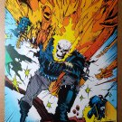 Ghost Rider 11 Larry Stroman Marvel Comics Poster by Mark Texeira