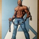 Luke Cage Hero for Hire Avenger Marvel Comics Poster by Stuart Immonen