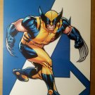 Wolverine Avengers 3 X-Men Marvel Comics Poster by Stuart Immonen