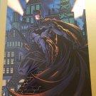 Batman The Dark Knight 11 DC Comics Poster by David Finch Richard Friend