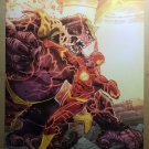 Flash 14 DC Comics Poster by Francis Manapul Brian Buccellato