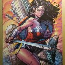 Wonder Woman 36 DC Comics Poster by David Finch Richard Friend