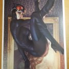 Catwoman 9 Art Print DC Comic Poster by Stanley Artgerm Lau
