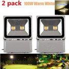 2X 100W HIGH POWER Cool White LED Outdoor Garden Flood Light Lamp IP65 110V