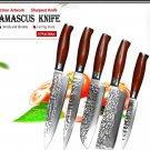 5Pcs Damascus Steel Kitchen Knife sets Professional VG10 Chef Knives Set