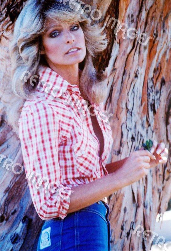 Farrah Fawcett 8x10 PS2801