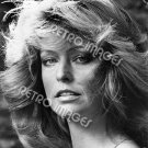 Farrah Fawcett 8x10 PS3501