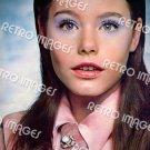 Susan Dey 8x10 PS901