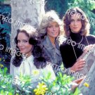 Charlie's Angels 8x10 PS202
