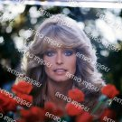 Farrah Fawcett 11x14 PS3301