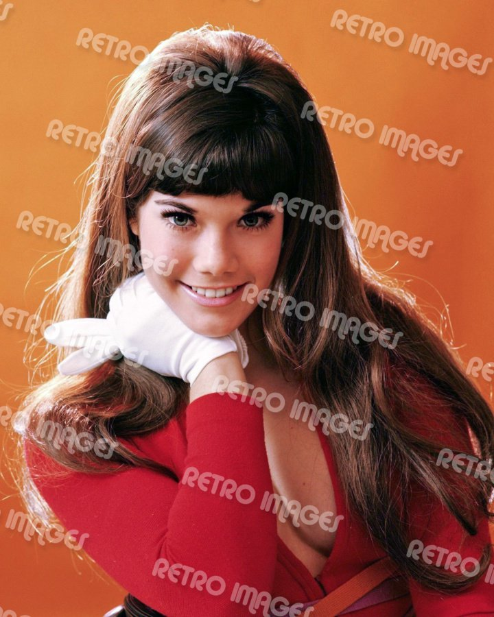 Barbi Benton 8x10 PS401