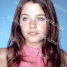 Susan Dey 8x12 PS1901