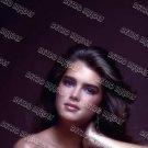 Brooke Shields 8x12 PS1302