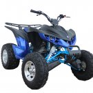 "Kandi Raptor 200 ATV, 10"" Alloy Wheels, Automatic with Reverse"