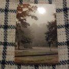 Photo Print: Misty Trees