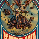 Grateful Dead Concert Poster 12x17 inches