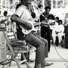 Muddy Waters  Photo Paper Poster  12x17 inches