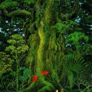 Secret of Mana Poster 12x19 inches