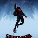 Spider-Man: Into the Spider-Verse (2018) Poster 24x36 inches