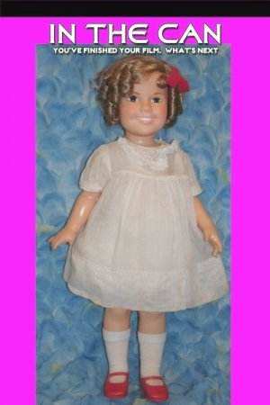 Vintage Shirley Temple Vintage Collectible Doll by Ideal in Mint Condition!