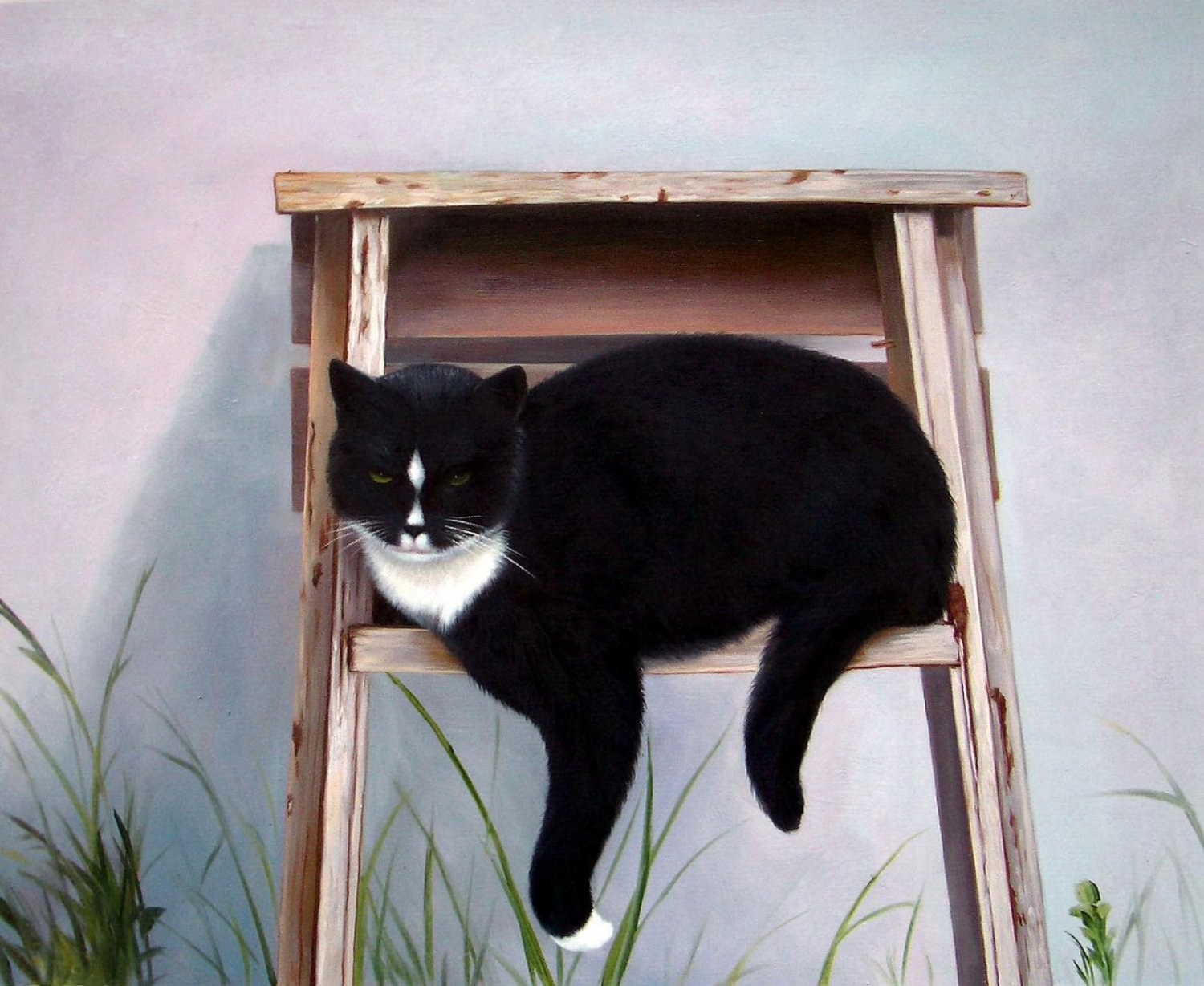 prtrait of pet cat 20x24 in. stretched Oil Painting Canvas Art Wall Decor modern011