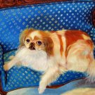 prtrait of pet dog 16x20 in. stretched Oil Painting Canvas Art Wall Decor modern035