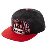 Attack on Titan Embroidery Snapback