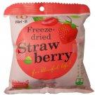 Freeze Dried Strawberry Healthy Fruit Snack Wel-B Brand Net Wt 22g