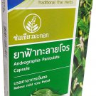 6 Boxes of Andrographis Paniculata Capsule Traditional Thai Herbs, Relie