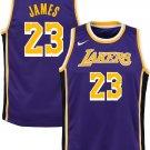 Youth boys lebron James lakers jersey purple
