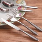 FW20/00: Nikita 20pc Heavy Duty Stainless Steel Flatware Set