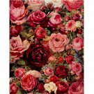 Red Roses DIY Acrylic Paint by Numbers kit