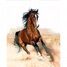Brown horse DIY Acrylic Paint by Numbers kit