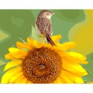 Bird on sunflower DIY Acrylic Paint by Numbers kit